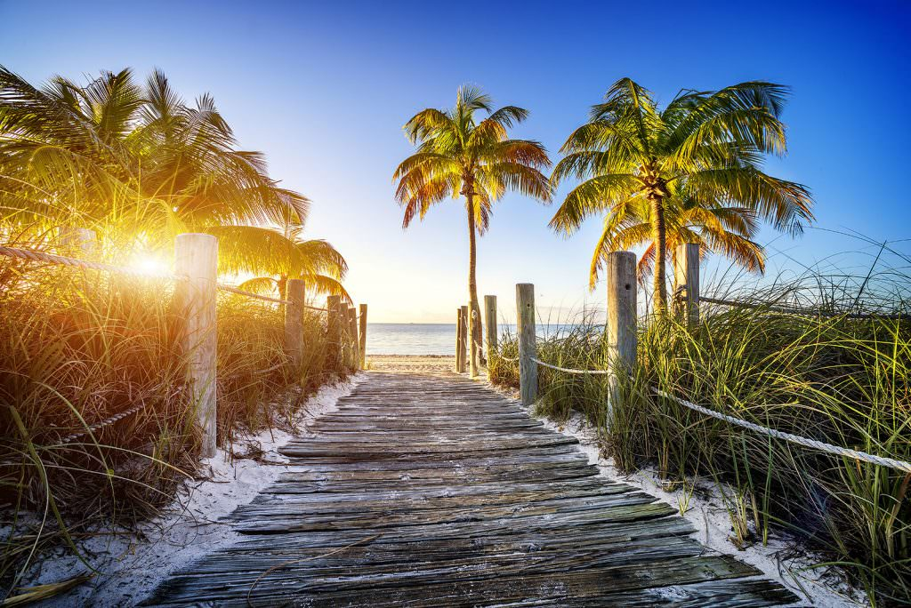 Florida Boardwalk