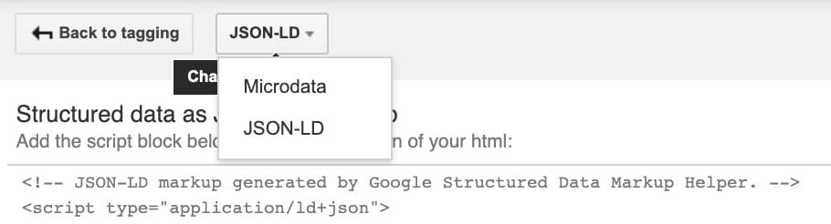 JSON-LD microdata options